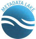 Metadata lake icon